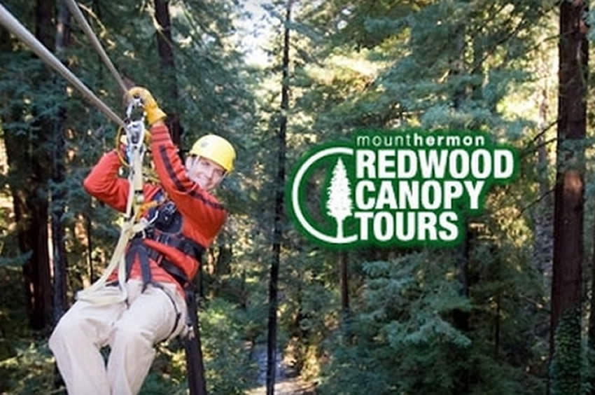 redwood-canopy-tours